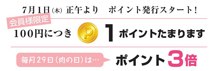 ポイント発行スタート2